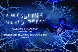Midsummer Night's Dream Website Slider