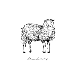 like-a-lost-sheep