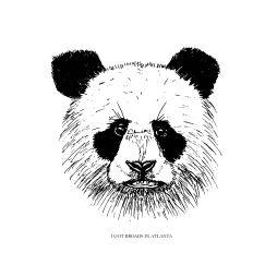 panda-broads