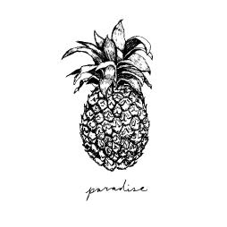 pineapple-paradise