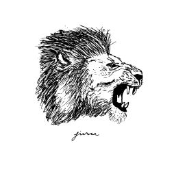 side-profile-lion