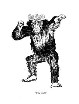 wild-child-monkey